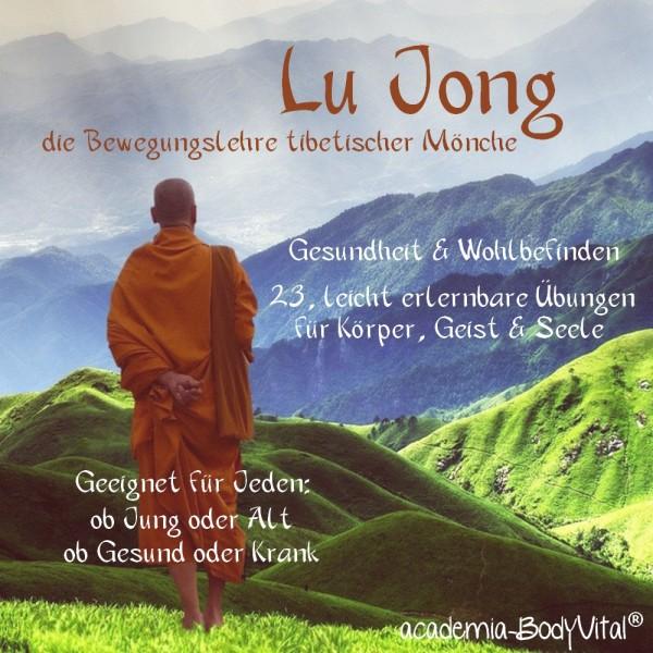 Lu Jong VitalPractitioner Ausbildung