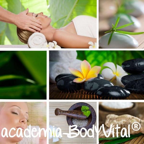 BodyVital® Aura Soma VitalPractitioner Ausbildung